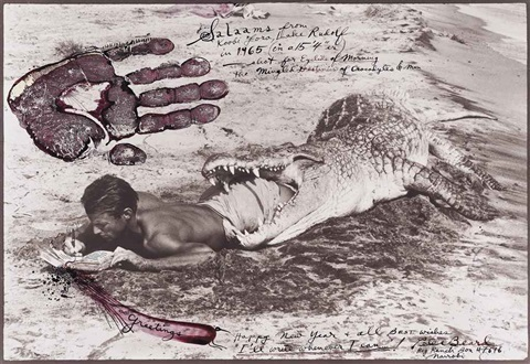 i'll write when i can by peter beard