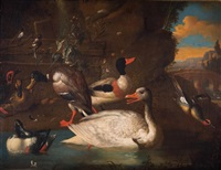 waterfowl by melchior de hondecoeter