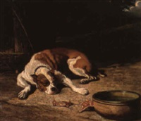 the sleeping dog by paul jean pierre gélibert