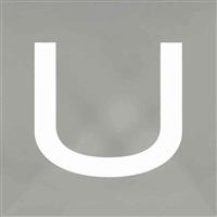 u-stencil by wade guyton