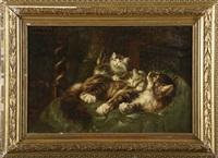 chatte couchée avec ses petits by henriette ronner-knip