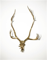 caribou skull by sherrie levine