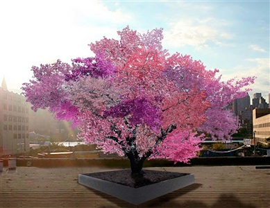 tree of 40 fruits by sam van aken