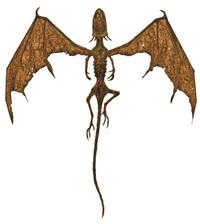 dracorex quattuorcornus by hajime emoto