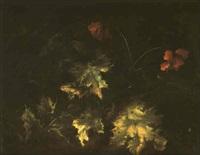 etude de feuilles et fleurs by niccolino van houbraken