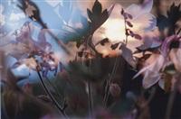 ohne titel (collab. w/peter fischli) by david weiss