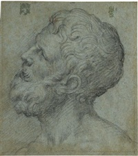 head of a man, looking upwards to the left by giuseppe (salviati) porta