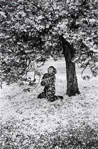 cerisier japonais by edouard boubat