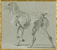 deux études de chiens (2 studies) by jan fyt