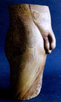 torso by leonhard maria d' alberti