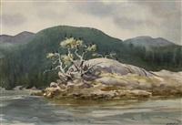 cormorant island by henry john simpkins