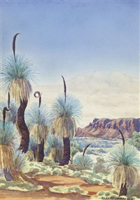 untitled (grass trees) by albert namatjira