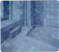 ambiente virtual ii by adriana varejao