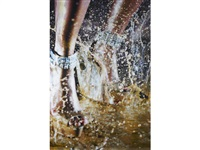 deluge by marilyn minter