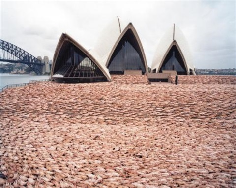 sydney 1 opera house by spencer tunick