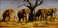 bulls of tsavo by gary r. swanson