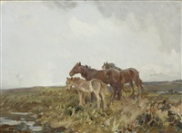 ponies on the moor by charles walter simpson