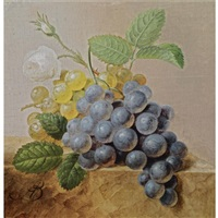 a still life with grapes by arnoldus bloemers