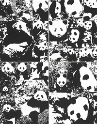 world of pandas (all day long) by rob pruitt