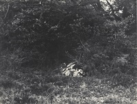 près de la reine blanche by eugène cuvelier