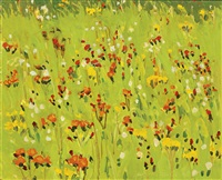hawkweed by fairfield porter