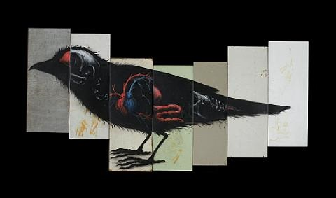 sparrow in 7 parts by roa