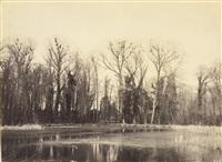 nids de corbeau, parc de courance by eugène cuvelier