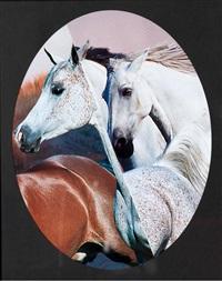 vier pferde by caroline heider