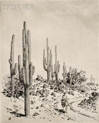 road to apache reservation - arizona by george elbert burr