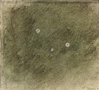 winter flower (ireland) by morris graves