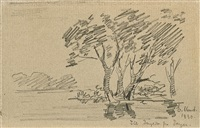 landscape with trees by edvard munch