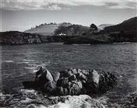 from point lobos by edward weston