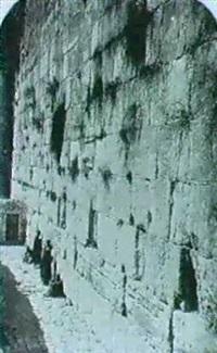 jerusalem.nine studies by j. mcdonald
