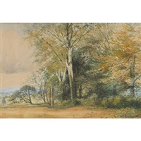 landscape with trees by william brymner
