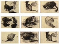 les chats (set of 8) by ernest van hoorde