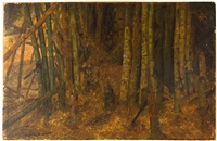 a study of bamboo by frederic edwin church