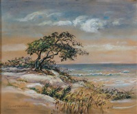 view from sullivan's island, charleston by elizabeth o'neill verner