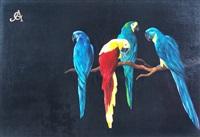 papagayos by carlos anesi