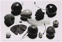 still life with grape and moth (b), new york by irving penn