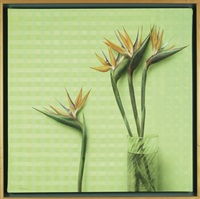 flower vase and green table cloth by francisco sebastian nicolau