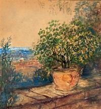 le citronnier by pierre laprade