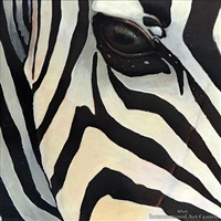 zebra by russell jackson