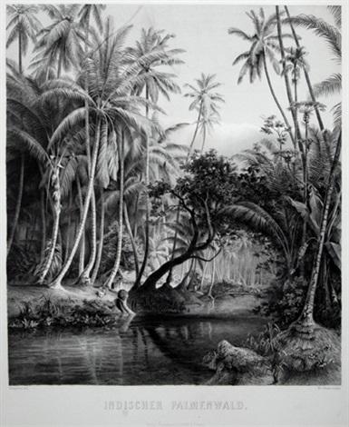 indischer palmenwald urwald auf ceylon 2 works by wilhelm von abbema