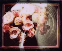 room flowers 12 by maurizio galimberti