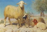 the desert flock by john rogers herbert