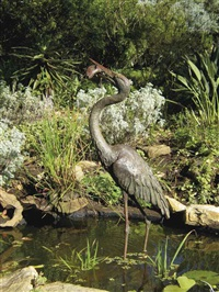 goliath heron by robert leggat