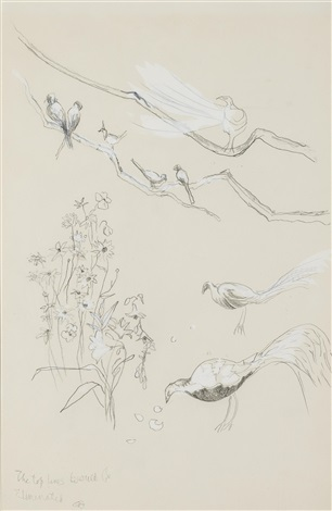 exotic birds in the tangier garden of the hon david herbert by cecil beaton