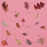 leaf study 32 by jonathan yeo