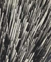 wood pickets, before by erhard dorner