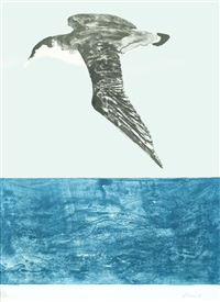 the shearwater by elisabeth frink